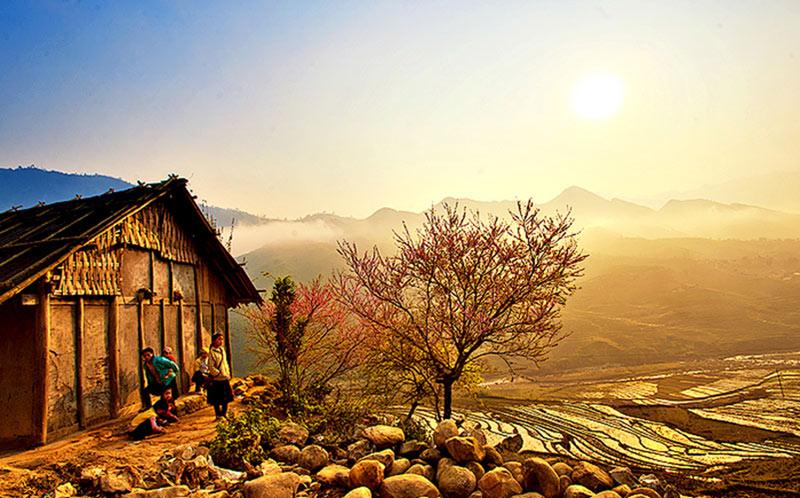dich-vu-seo-web-len-top-google-tai-lao-cai